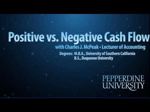 Discounting Negative Cash Flow