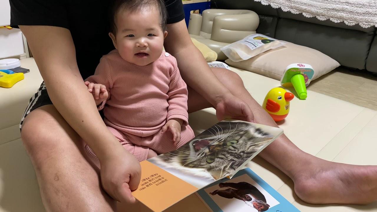 고양이 언어를 습득한 12개월아기