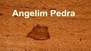 Baixar Angelim Pedra - Tipos de Madeiras