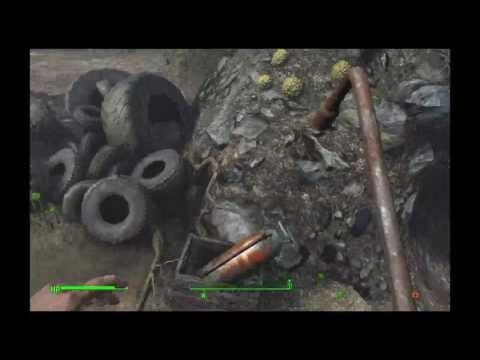 loco4pack running around in Fallout 4
