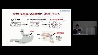 「Epstein-Barrウイルス関連癌に特異的な抗腫瘍剤」 島根大学 医学部 医学科・微生物学講座 教授 吉山 裕規