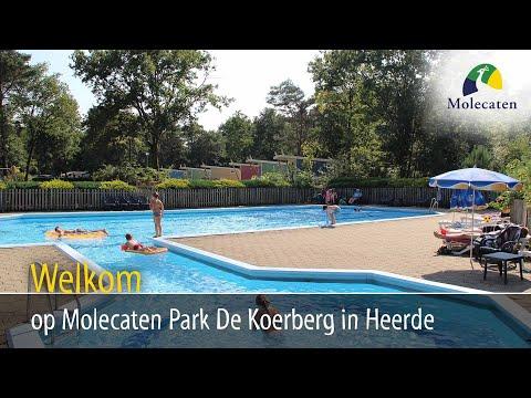 Welkom op Molecaten Park De Koerberg, Heerde, Veluwe