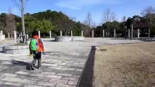 愛犬コイケルのテラとの散歩風景。陽気のイイ日はのんびり、ゆっくり散...