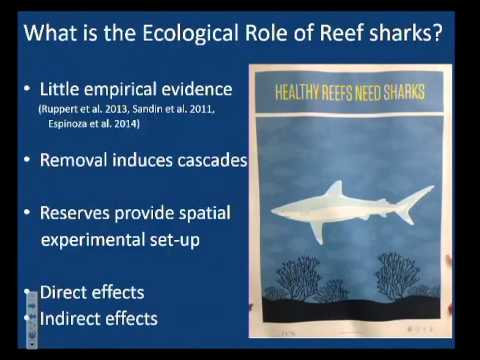 SoMAS - The effects of marine reserves on Caribbean reef sharks and southern stingrays