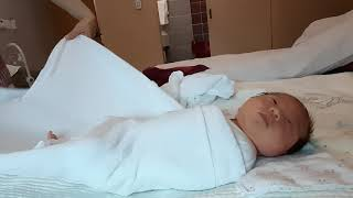 신생아 배냇저고리 기저귀 속싸개 싸기 배우기