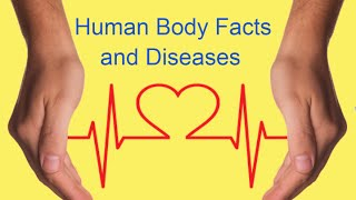 Science Quiz Questions and Answers - Human body Facts