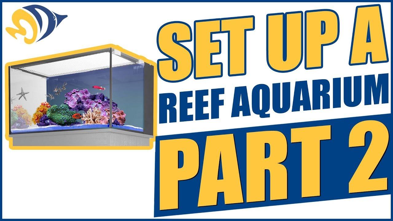 How to Set Up a Reef Aquarium, Part 2: Leak Test ...