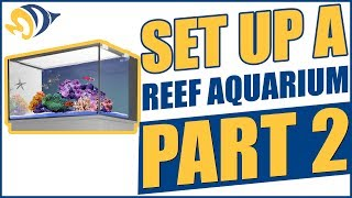 How to Set Up a Reef Aquarium, Part 2: Leak Test & Aquascaping