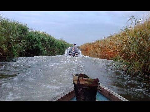 Рыбалка на Кубанских лиманах (клип)