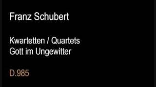 Schubert D985 (Quartet) Gott im Ungewitter.wmv