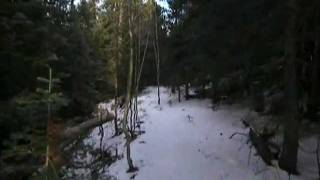 Winter on the Big Creek Trail