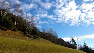 Herbstweisen - Walzer von E. Waldteufel - Grammophon 78 Rpm Schellack