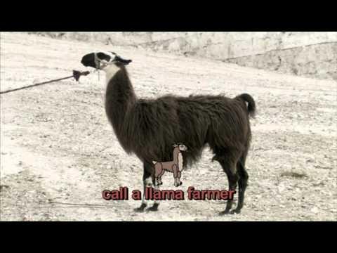 Horrible Histories  Incas