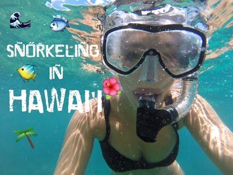 SNORKELING IN HAWAII | VLOG
