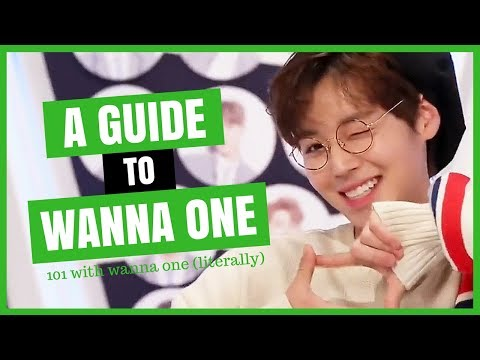 A Very Unhelpful Guide to WANNA ONE