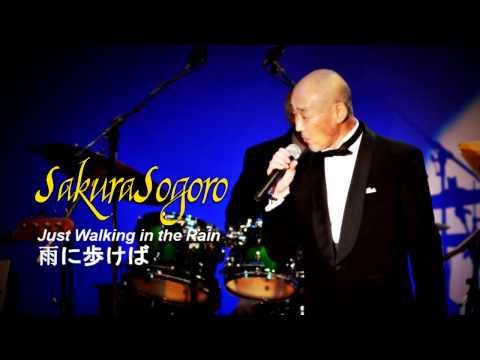 さくら草五郎 - Just Walking in the Rain (雨に歩けば) [Cover]