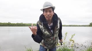 💥393-Số sát Cá câu không có cá