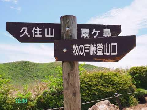 2018 05 25九重連山・扇ケ鼻1698m~中岳1791mのミヤマキリシマイワカガミ