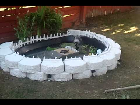 Cool turtle pond - YouTube