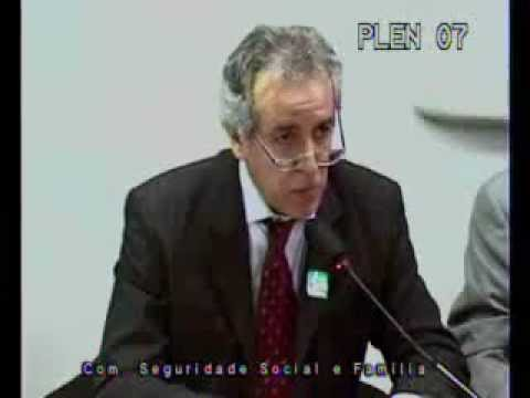 Especialista defende a vida dos cães brasileiros