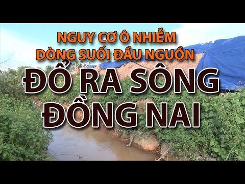 (VTC14)_Nguy cơ ô nhiễm dòng suối đầu nguồn đổ ra sông Đồng Nai