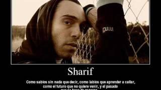 sharif-triste cancion de amor(con letra)