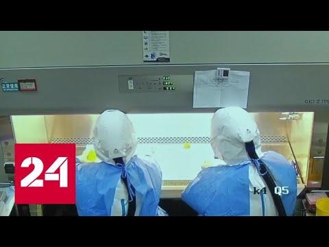 Число жертв коронавируса в Китае составило уже 132 человека - Россия 24