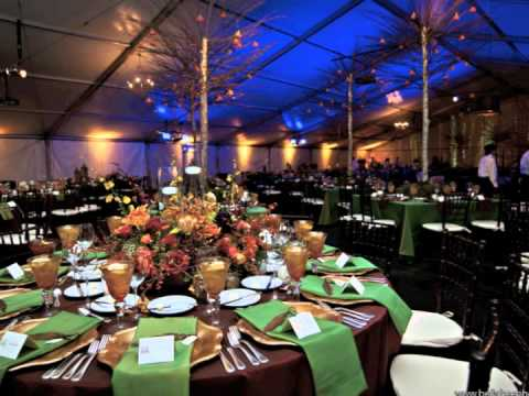 Wedding Reception At The Fort Worth Zoo