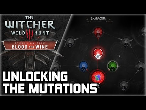 WITCHER 3 Mutations ► How to unlock the new skill tree in Toussaint (Quest Walkthrough)