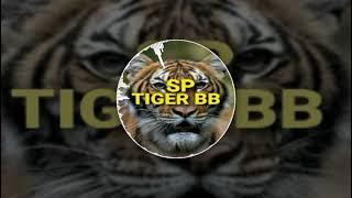 SP.TIGER BB
