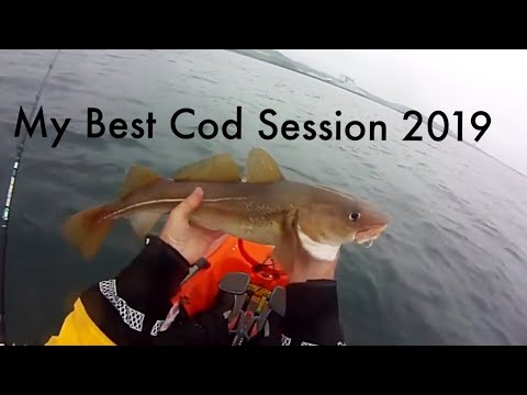 Cod Fishing Uk - Sea Fishing Dunbar Torness Power Station