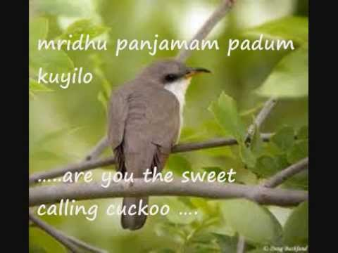 A royal Lullaby- Omana Thinkal Kidavo with English translation ( Malayalam)