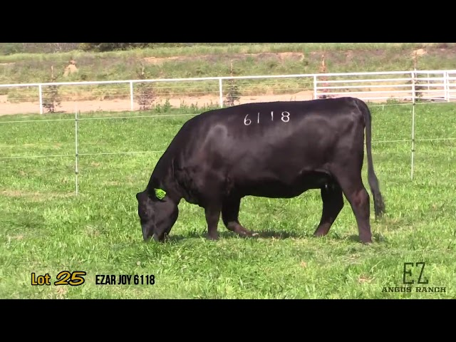 EZ Angus Ranch Lot 25