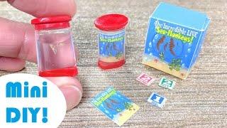 DIY Miniature Sea Monkey Aquarium!
