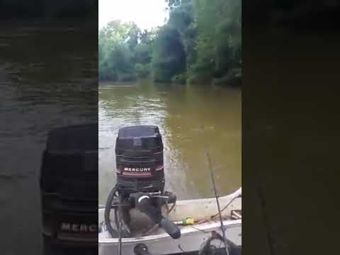 Awesome Day On Black River Poplar Bluff Missouri Catfishing With Kyle Lewis