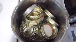 Making Wild Plum Jam
