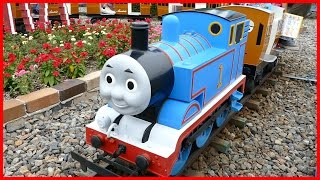 Thomas And Friends Train Rides For Kids Family Fun Summer Holiday