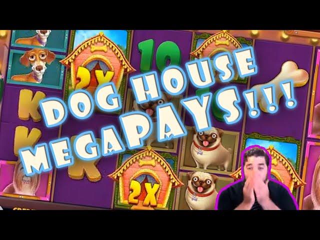 MASSIVE HIT on DOG HOUSE MegaWays!!!