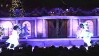 2004年の冬にTDSで上演されたステージショー。何度見ても感動です。