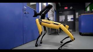 """Digne de """"Black Mirror"""" : ce chien-robot sait désormais ouvrir des portes"""