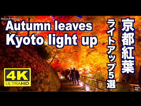 京都の紅葉にライトアップは幻想的!