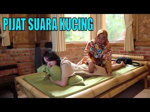 Sensasi Unik Pijat Suara Kucing   TAU GAK SIH (29/09/20)