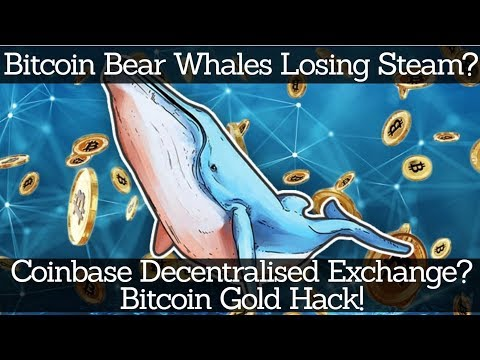 Crypto News | Bitcoin Bear Whales Losing Steam? Coinbase Decentralised Exchange? Bitcoin Gold Hack!