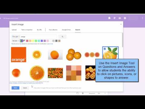 Google Forms Quizzes for Early Childhood