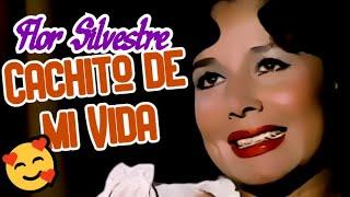 Cachito de mi vida (video musical de Flor Silvestre) HD