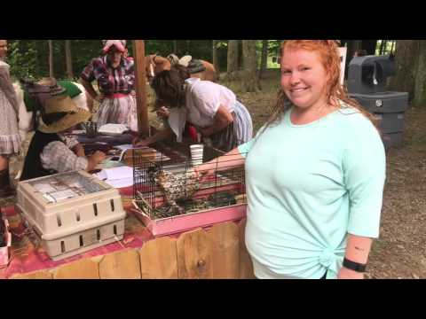 Yankee Peddler Festival at Clay's Park in Canal Fulton, Ohio on Saturday, 09-10-2016