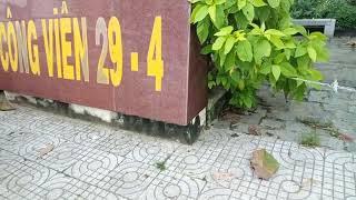 QL22 công viên 29/4 huyện Trảng Bàng tỉnh Tây Ninh