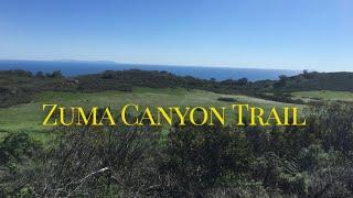 Hike Zuma Canyon Trail in Malibu