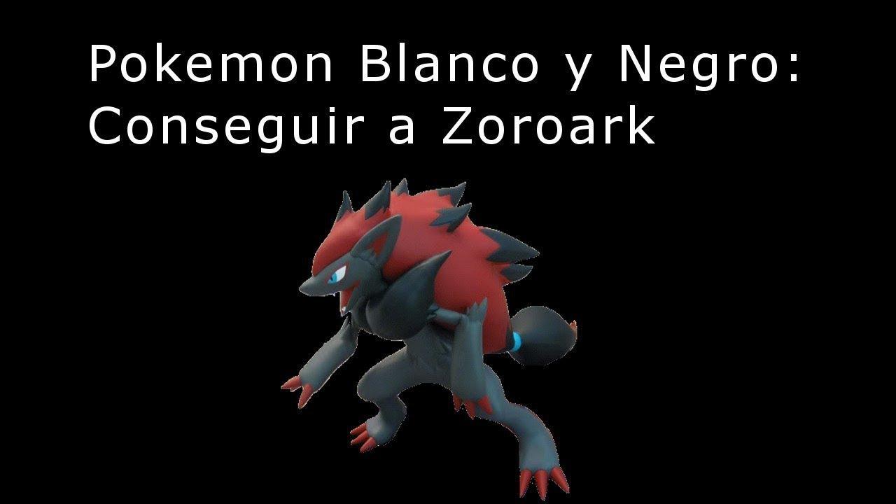 how to get zoroark in pokemon y