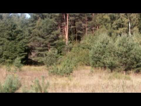 Samsung I8910 Omnia HD video sample #1
